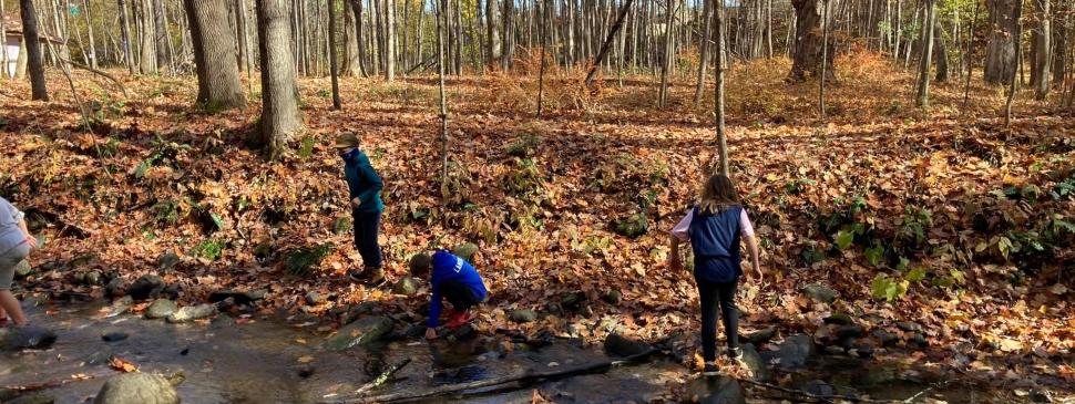 DBS 3rd graders in the creek.jpg